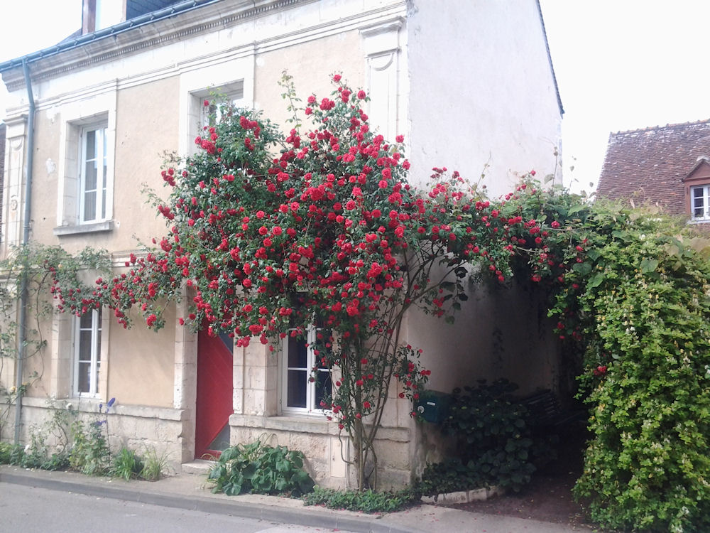 Visite Village Jardin Chedigny : Chambres d hôtes notes florales ch� digny vall� e