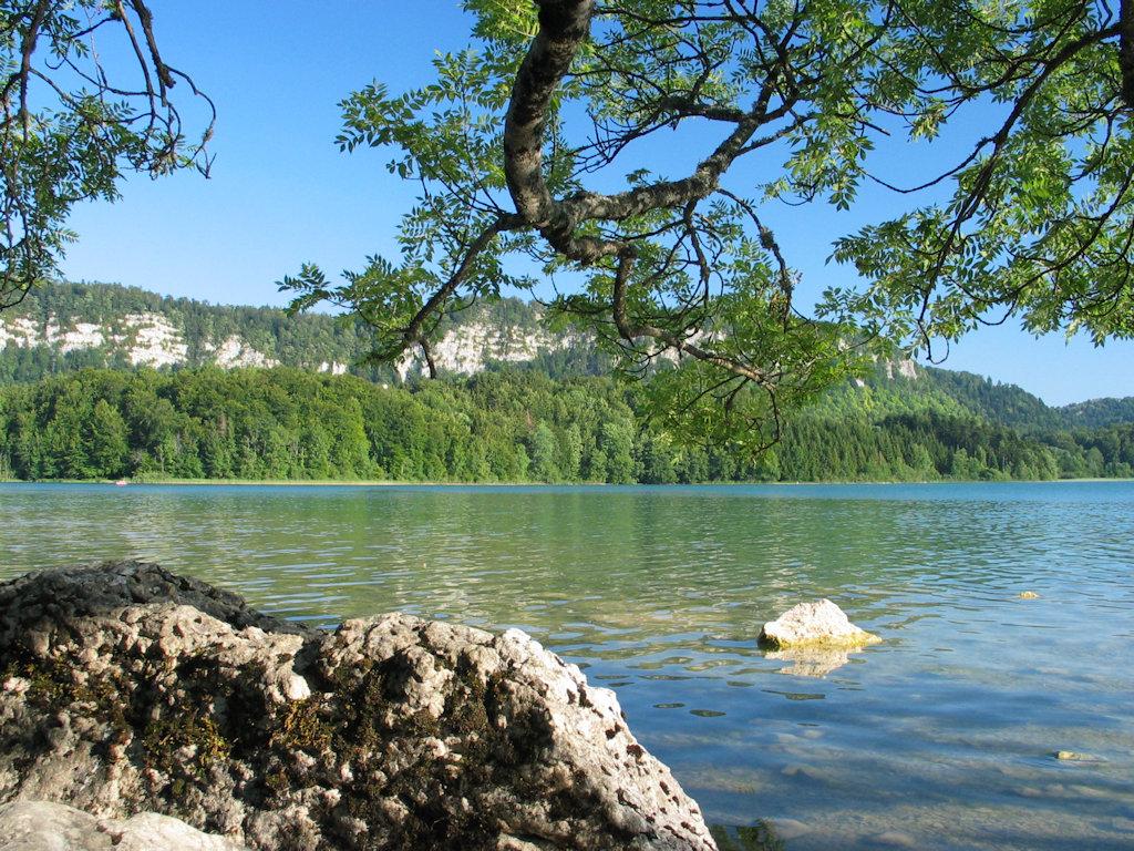 Chambre d 39 h tes auberge des 5 lacs chambres d 39 h tes le frasnois r gion des lacs - Les chambres d hotes du lac ...