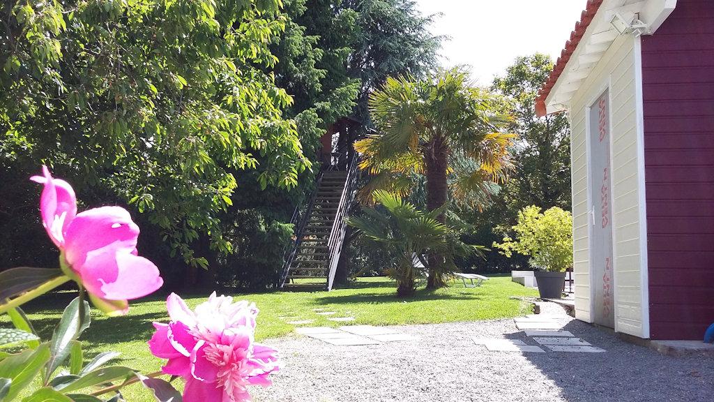 Chambre d 39 h tes le nid la cabane cabane port saint p re - Chambre d hote dans les arbres ...