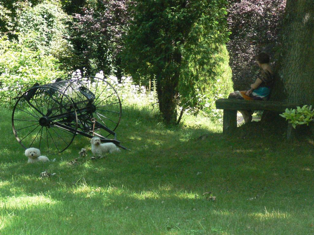 Bed breakfast moulin de landonvillers kamers b b landonvillers lorraine moselle - Outs allee tuin ...