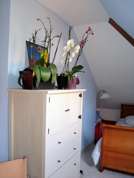 chambres d 39 h tes les acacias chambres d 39 h tes niederbronn les bains. Black Bedroom Furniture Sets. Home Design Ideas