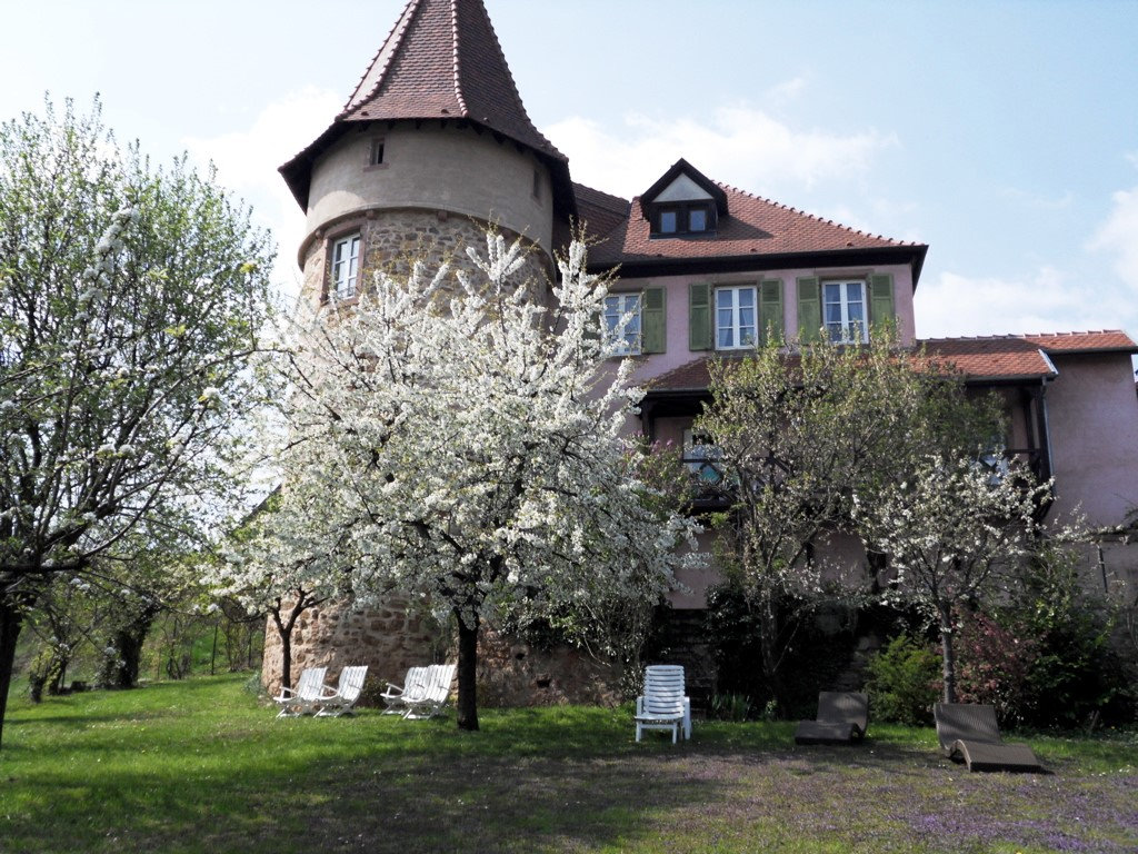 Chambres D Hotes Clos Froehn Rooms And Suite Zellenberg