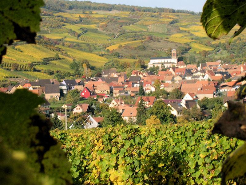 Chambre Quot Jonquille Quot Chambres D H 244 Tes Westhalten Alsace