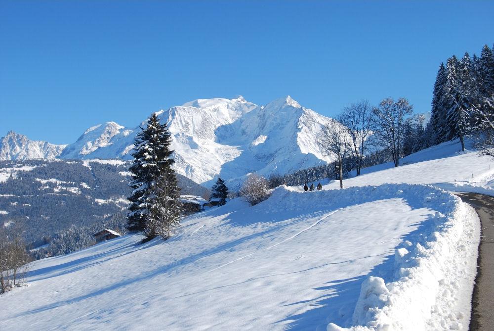 Chambres d 39 h tes la ferme du mont blanc chambres d 39 h tes for Chambre hote alpes