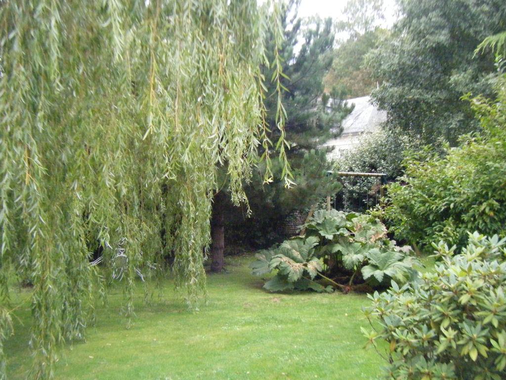 Chambre d 39 h tes la petite maison chambre veules les roses haute normandie - Chambre d hotes le poteau rose ...
