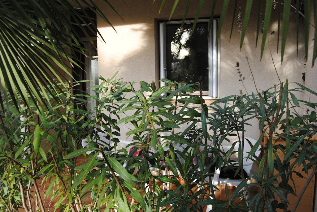 Les palmiers 126 locations de vacances nice sud est la for Garage les palmiers nice
