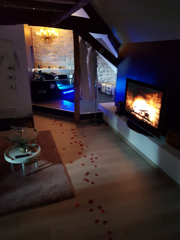 Appartement Glamour Avec Spa Privatif Suite Dijon Centre Ville