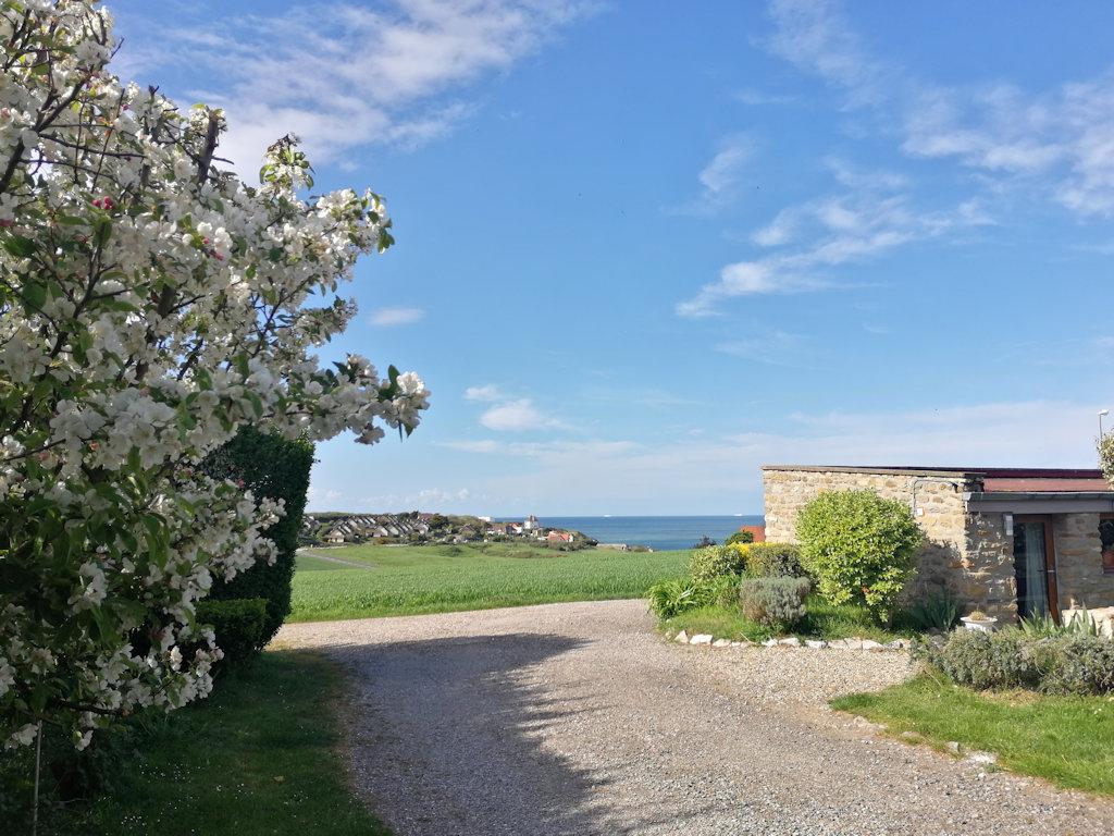 Cottage Pavillon Bel Air cap Gris-Nez, Ferienwohnung ...
