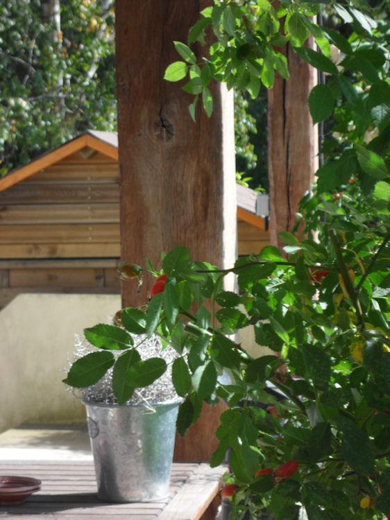 Prairie bonheur locations de vacances magny les hameaux for Jardin de cocagne magny les hameaux