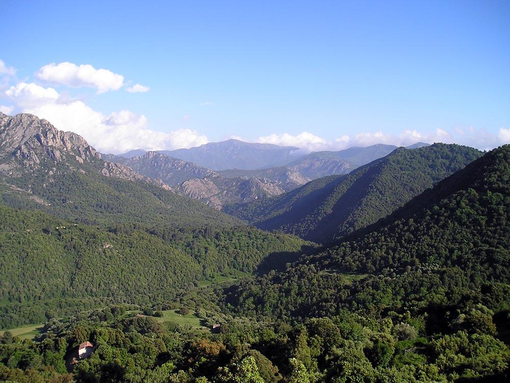 Tourisme 224 Vico Corse Du Sud