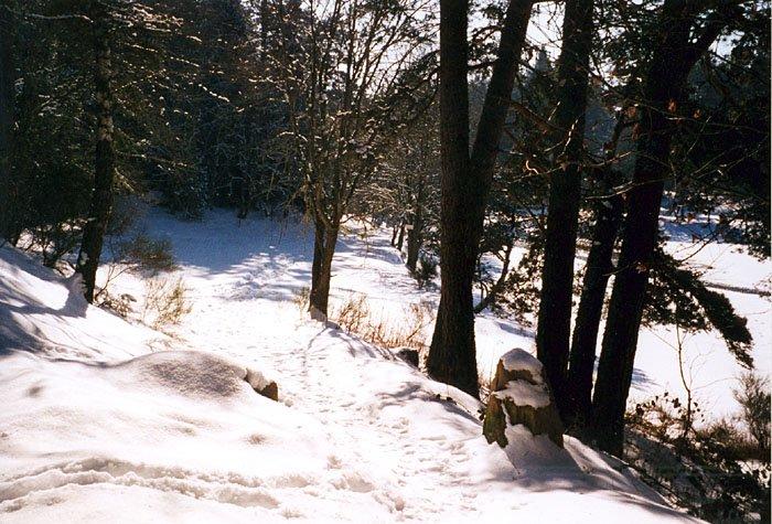 La chaise dieu ski informations et enneigement - Notre bergerie la chaise dieu ...