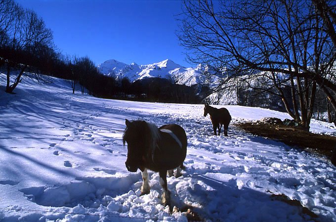 Tourisme peyragudes hautes pyr n es - Office tourisme hautes pyrenees ...