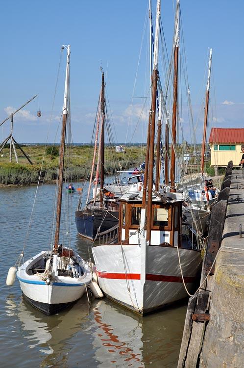 Tourisme mornac sur seudre charente maritime - Office tourisme vaux sur mer ...