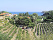 Bed & Breakfast  Domaine de Valcros Port Vendres