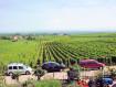 Chambres d'hôtes du Vignoble Riquewihr