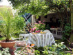 Bed & Breakfast Aux Sources de la Souffel
