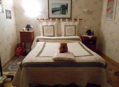 chambre d 39 h te room in celles en dordogne 24 p rigord vert. Black Bedroom Furniture Sets. Home Design Ideas